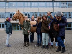 Pferde-AG_1.jpg